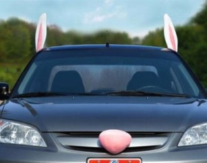 medium_bunny-car-decorations